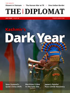 Kashmir's Dark Year