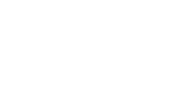 Diplomat Risk Intelligence