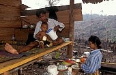 Indonesia's Climate Experiment