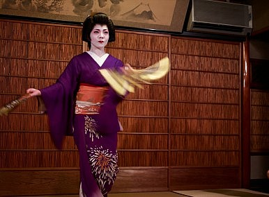 The 'Japanese Aesthetic'