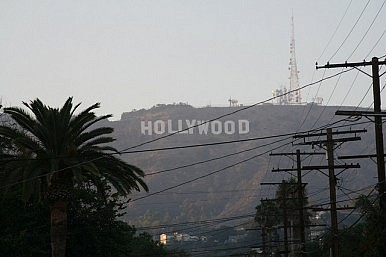 WikiLeaks, Hollywood and GDP
