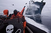 Way Out for Japan's Whaling?