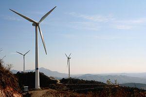 China's Coming Green Boom