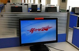 The Information Age:N. Korean Style