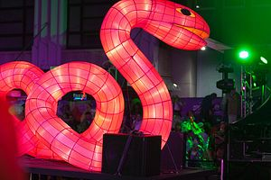 The Year of the Snake Slithers In