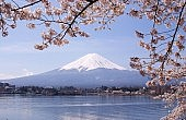 Mount Fuji to Become a UNESCO World Heritage Site