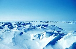 China Joins the Arctic Council