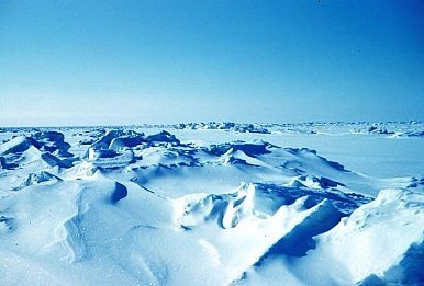 China's Arctic Strategy
