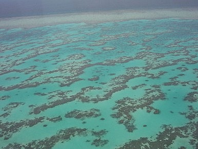 US Forced to Drop 4 Unexploded Bombs on Great Barrier Reef