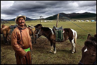 The Mongol Horse: Supreme on the Steppe