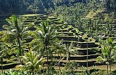 Bali: Indonesia's Laid-Back Hindu Haven
