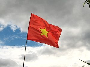 Decree 72: Vietnam's Confusing Internet Law
