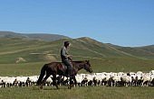Mongolia Joins Shale Revolution, But at What Cost?