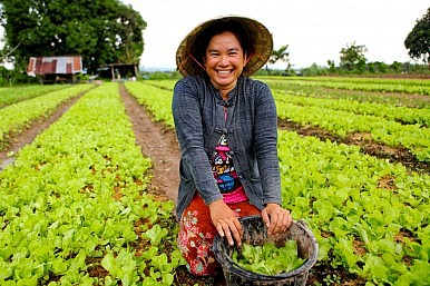 Back to the Earth: IFAD Helps Build Better Lives in Laos