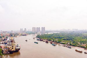 Scientists: The Saigon River Is Dying