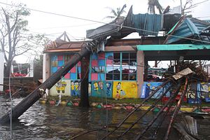 Southeast Asia in 2013: Disasters and Election Protests