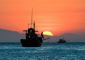 Hainan's New Fishing Rules: A Preliminary Analysis