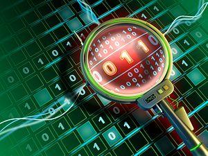 Protecting the Digital Domain