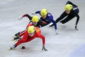 Short Track Speed Skating: Asia's Winter Olympics Discipline