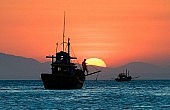 Hainan's New Fishing Rules: A Preliminary Analysis