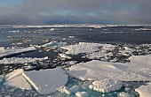 Russia to Establish Arctic Military Command