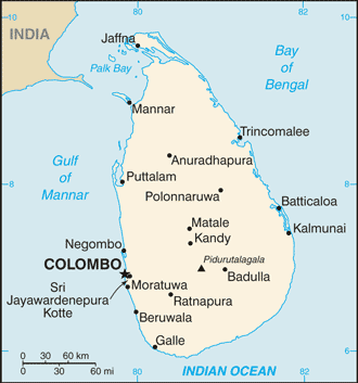 India and Sri Lanka: Playing the Long Game?