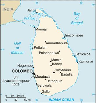 India and Sri Lanka: Playing the Long Game?