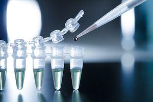 RIKEN Center: Japanese Scientist Falsified Data in Stem Cell Breakthrough