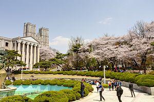 South Korean Students Delaying Graduation