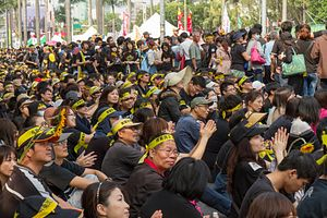 Sunflower Movement Hangs Over Chinese Official's Trip to Taiwan
