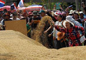 Thailand's Rice Scheme Post-Mortem