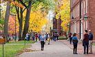 China's Ivy League Love Affair