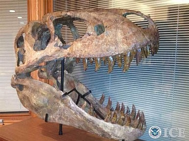 US Repatriates Mongolian Dinosaur Fossils
