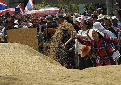 Thailand's Rice Scheme Post-Mortem