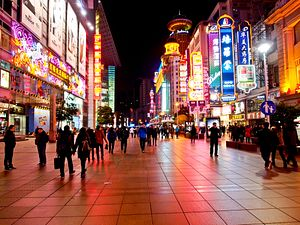 Chinese Consumption: Here to Stay?