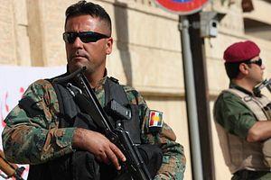 Grant Kurdistan Arms and Independence