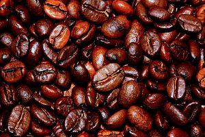 North Korea (Gradually) Warms Up to Coffee