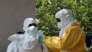 The U.S. Military vs. Ebola: Lessons From the Asia-Pacific