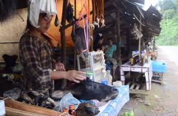 Laos: From Guns to Headlamps