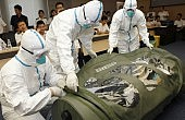 Did SARS Prepare East Asia for Ebola?