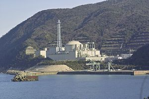 Local Rifts on Display in Japan's Nuclear Restart