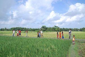 Bangladesh's Persistent Water Crisis