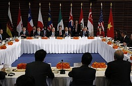 After APEC, Whither the Trans-Pacific Partnership?