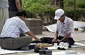 Tough Times for Korean Elders