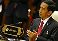 Indonesia: A Potential Leader in the Indian Ocean