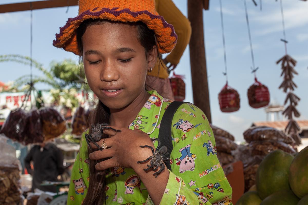 The Cambodian Tarantula Hunters