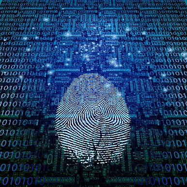 Will Pakistan's Cellphone Biometric Push Pay Counter-Terrorism Dividends?