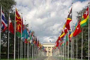 Diplomatic Access