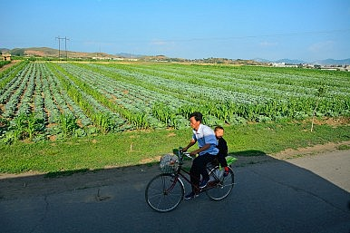 The Political Prestige of North Korea's Agricultural Reforms