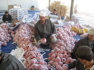 Leveraging Impact Investment in Post-2014 Afghanistan